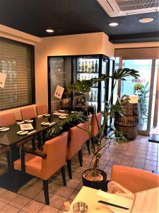 レストラン・カフェの観葉植物_1_モンステラ