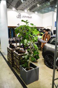 イベントのレンタル観葉植物_1_ベンガレンシス