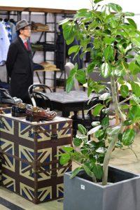 東京のレンタル観葉植物_1_ショップのベンガレンシス