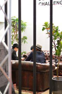 装飾・撮影のレンタル観葉植物_2_アムステルダムキング
